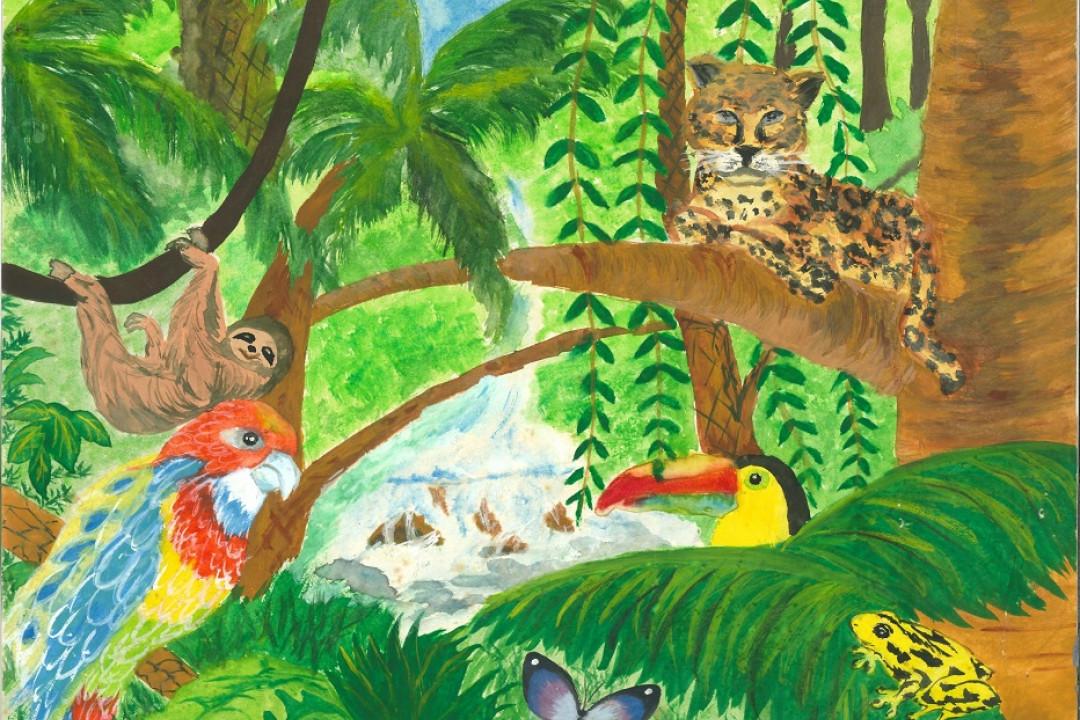熱帶雨林 6C_黃晴