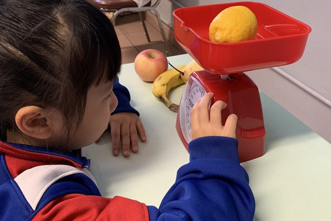 數學周活動-量度水果的重量